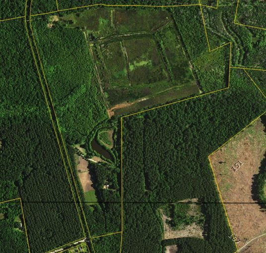 Land Cottageville, SC 29435