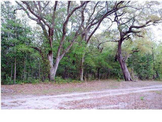 11  Residential Lots Oakwood Circle Ravenel, SC 29470