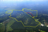 Hunter Haven Tract 1489 +/- Acres - ALL Opportunity Zone